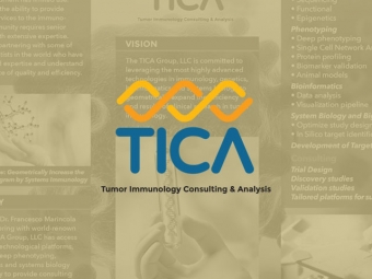 The TICA Group Brochure