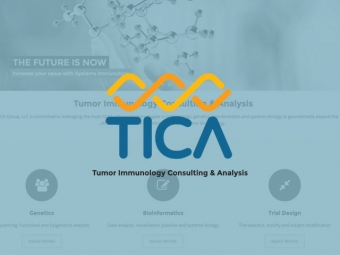 The TICA Group Website